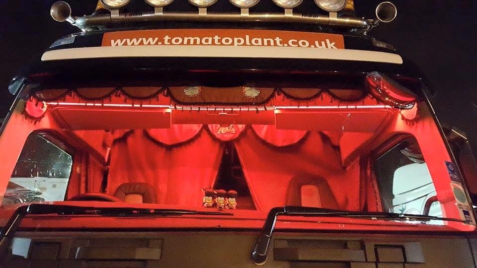 Toerags full set Truck curtains inc bunk